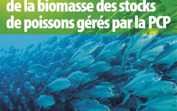 Poster sur l'état et le développement de la biomasse des stocks de poissons gérés par la PCP