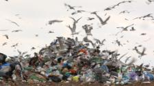 How to deal with Europe's waste?