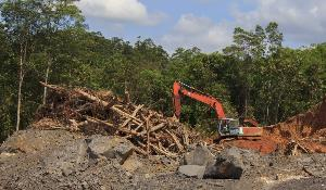 Deforestation for oil palm plantations ©AP Images/European Union-EP