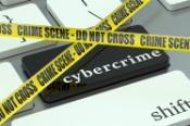 The fight against cybercrime