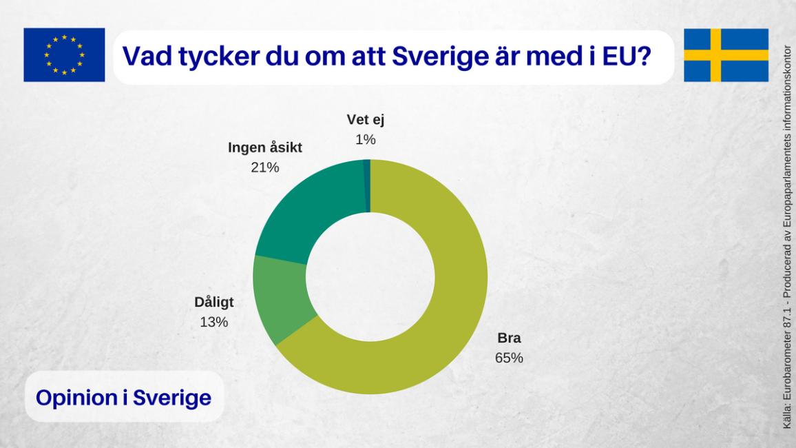 Eurobarometer Visual option SV