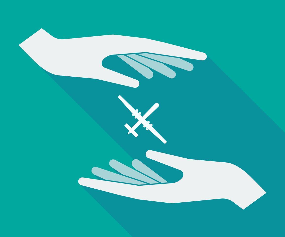 Kujundlik foto: lennuk kahe käe vahel ©AP Images/European Union - EP