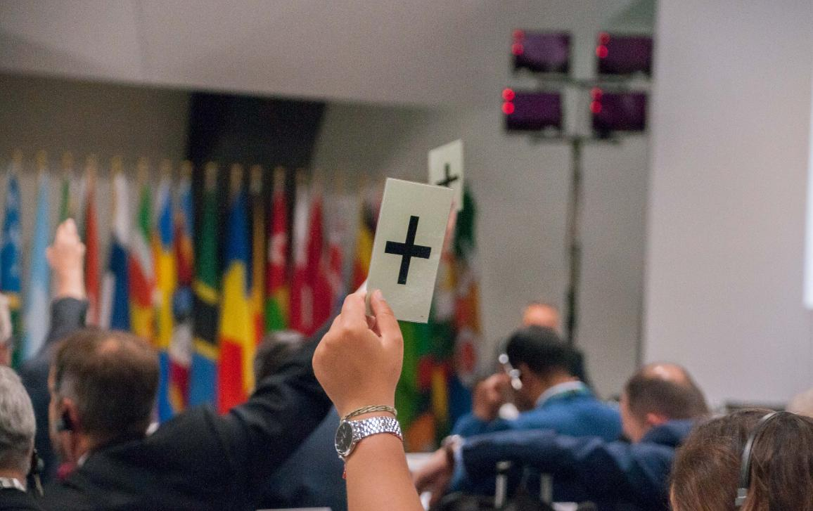 Plenary vote session at the closing of the 33rd session of the ACP-EU JPA