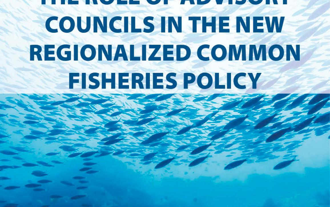 Poster for Public Hearing on the Role of advisory councils in the new regionalized CFP