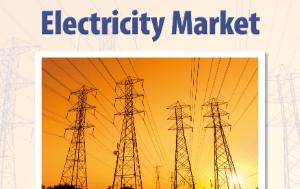 ITRE Hearing_The Future of the EU Electricity Market_July 2017