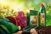 Bottles and containers of gardening products for the growth of plants. With flowers and plants of decoration and green background of nature and sunlight.