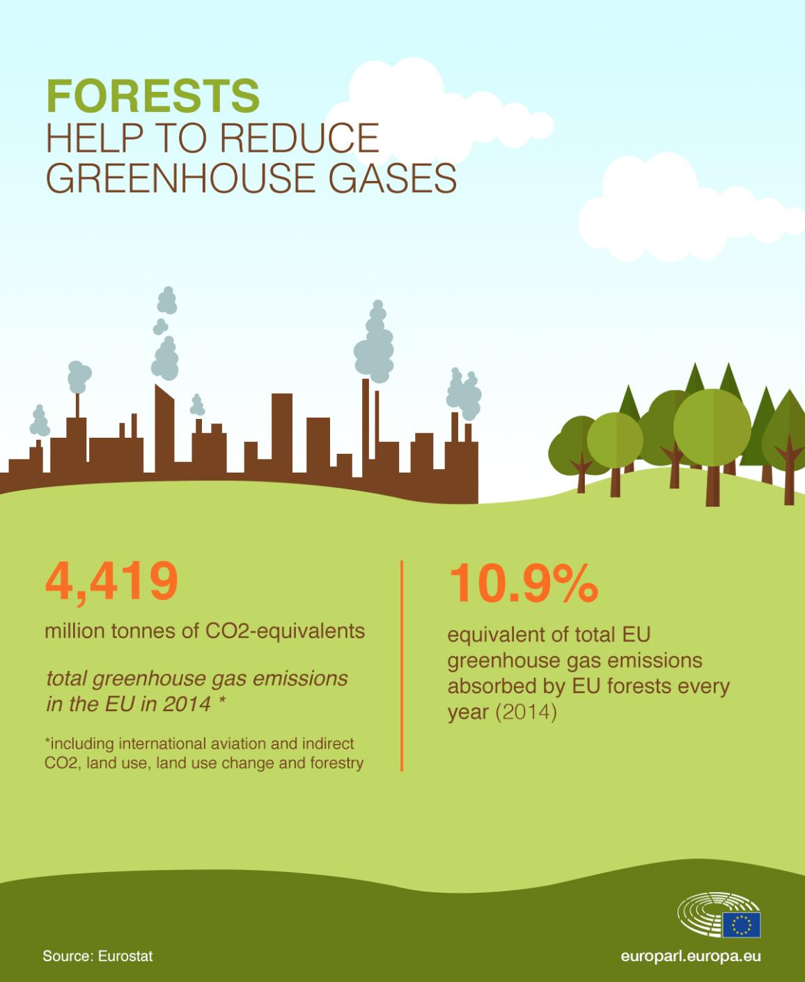 Infographic about the impact of deforestation