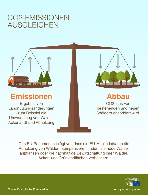 Die Infografik zeigt, wie im LULUCF-Bereich Emissionen entstehen und abgebaut werden