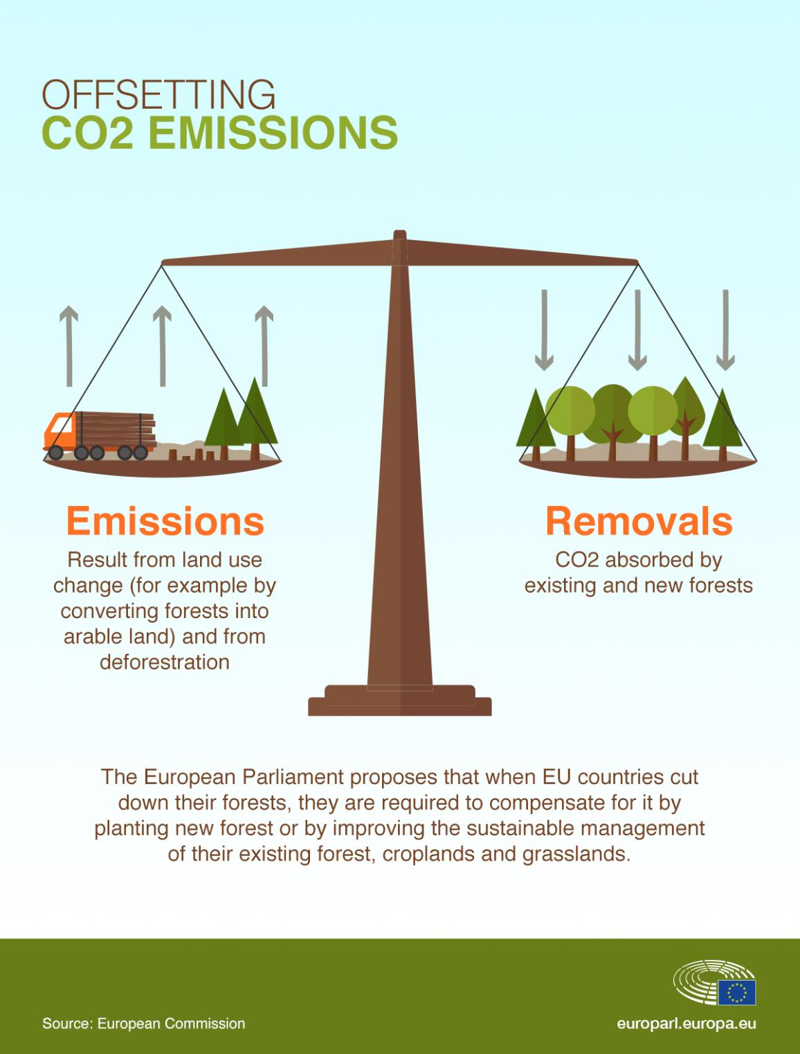 Infographic about how MEPs want to tackle the negative effects of deforestation