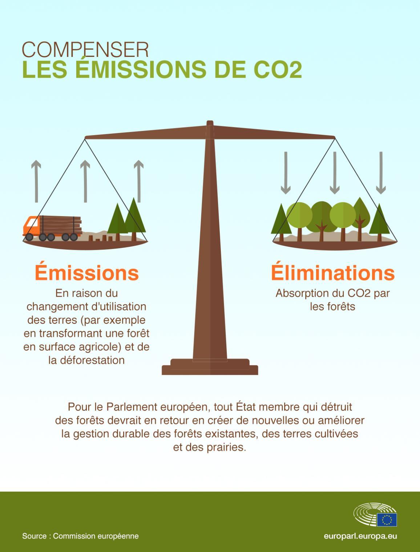Infographie sur les forêts et les compensations des émissions de CO2