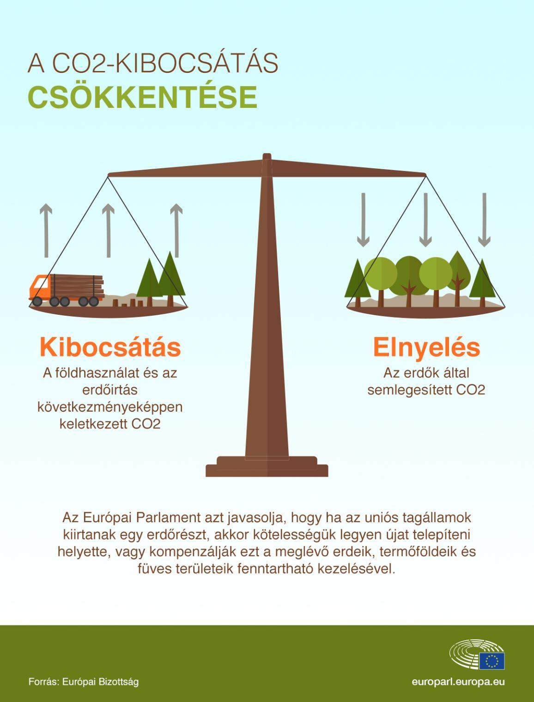 Infografika: az erdők védelmével a szén-dioxid-kibocsátás ellensúlyozásáért