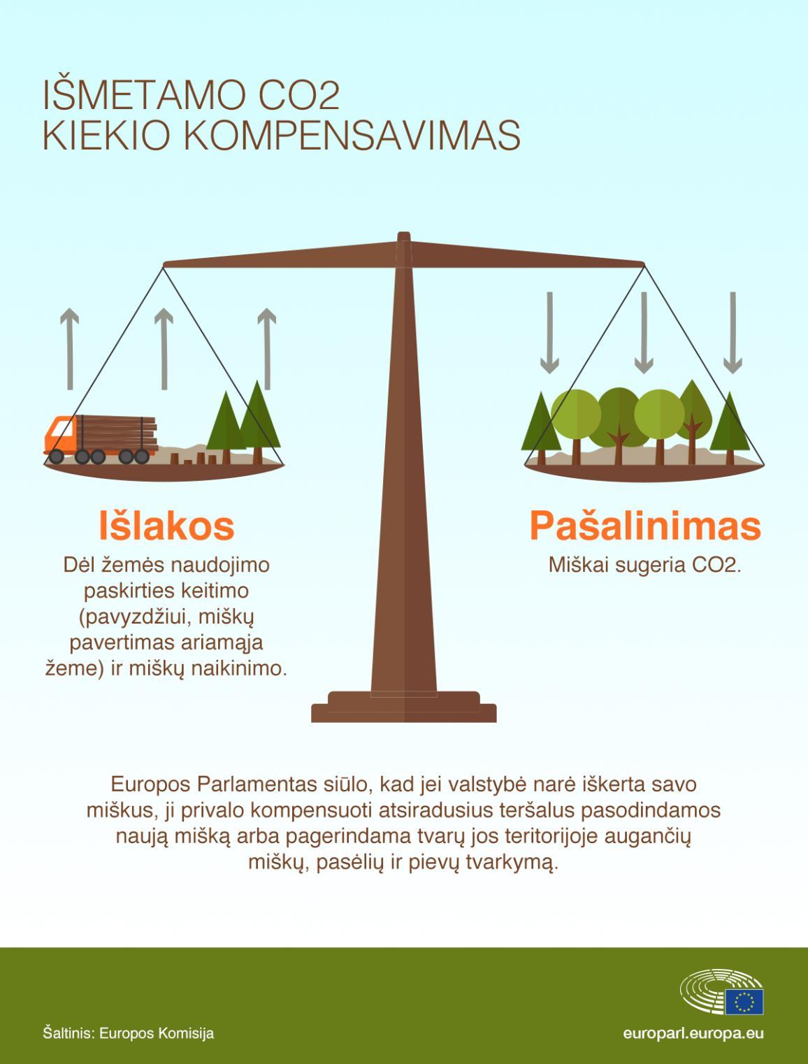 Infografikas: klimato kaita: miškai – į pagalbą šalinant anglies dvideginį iš atmosferos