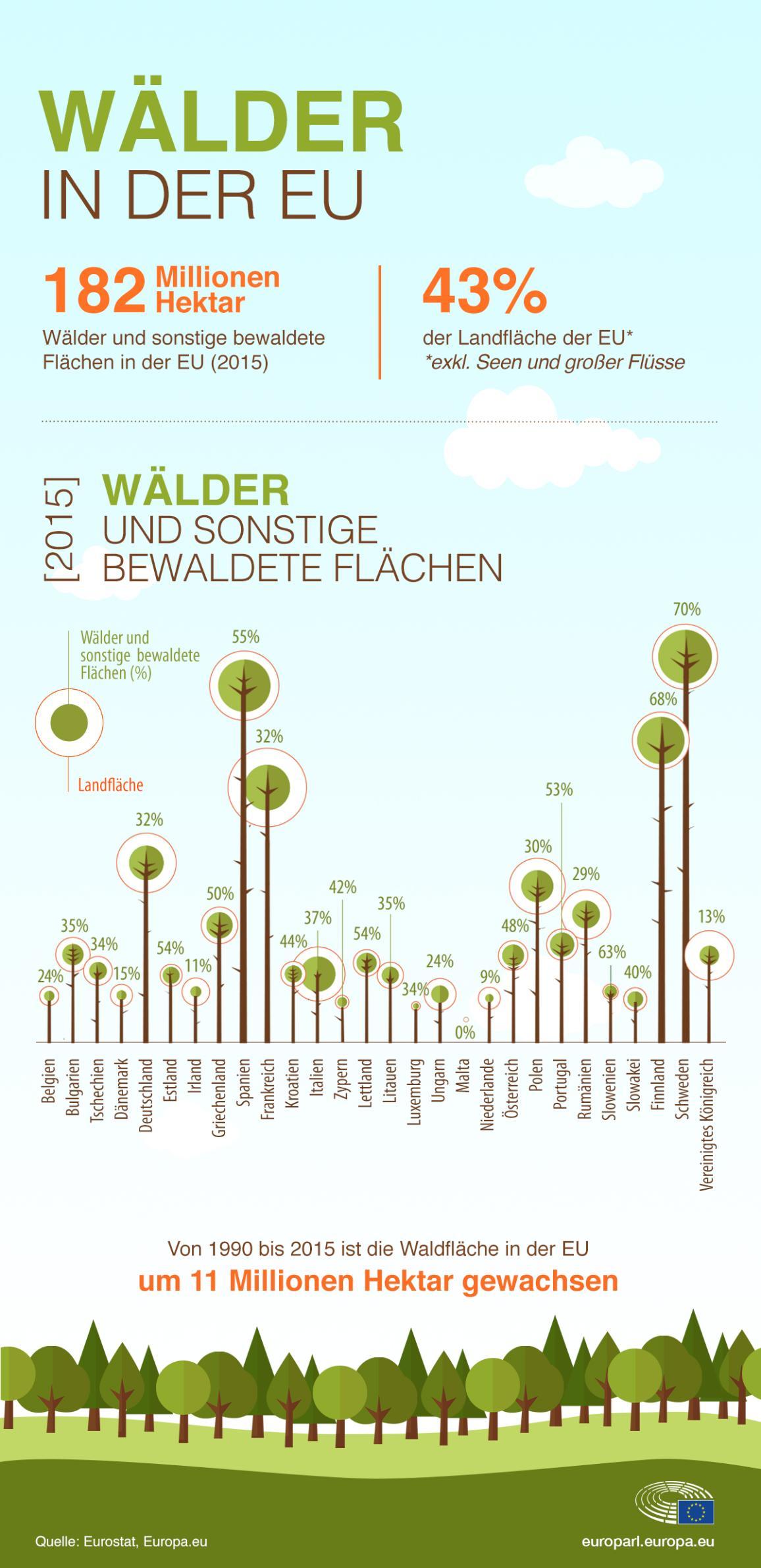 Die Infografik zeigt den Anteil des Waldes an der Landfläche der einzelnen Mitgliedstaaten