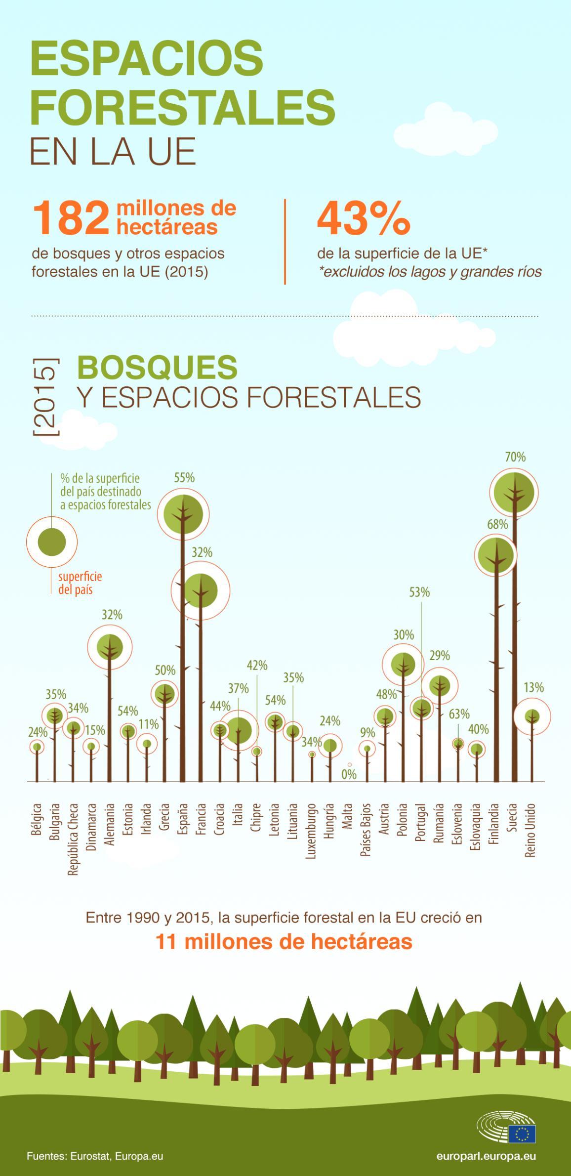 Imagen de infografía con datos sobre la superficie forestal de cada país.