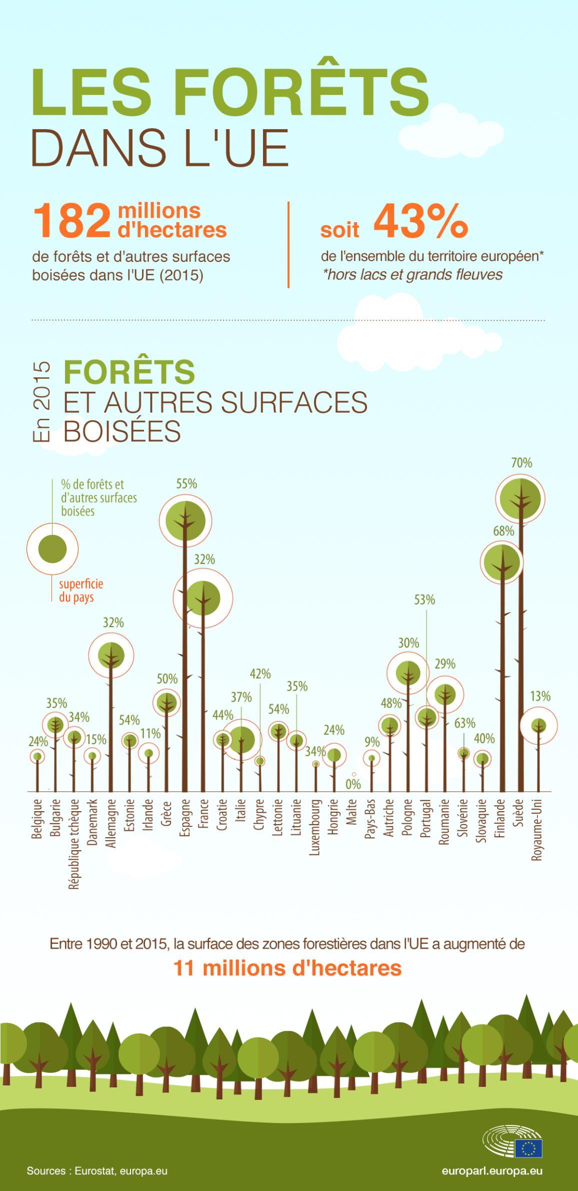 Infographie sur les forêts dans l'UE