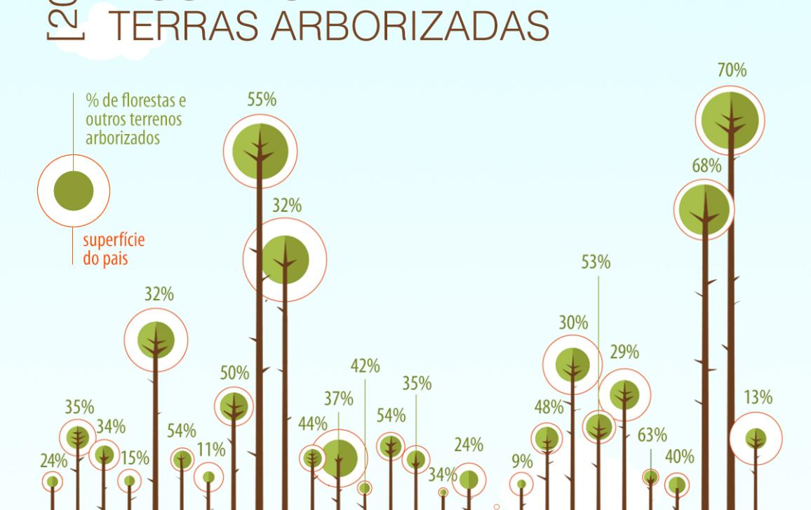 >Infografia com dados sobre as florestas europeias
