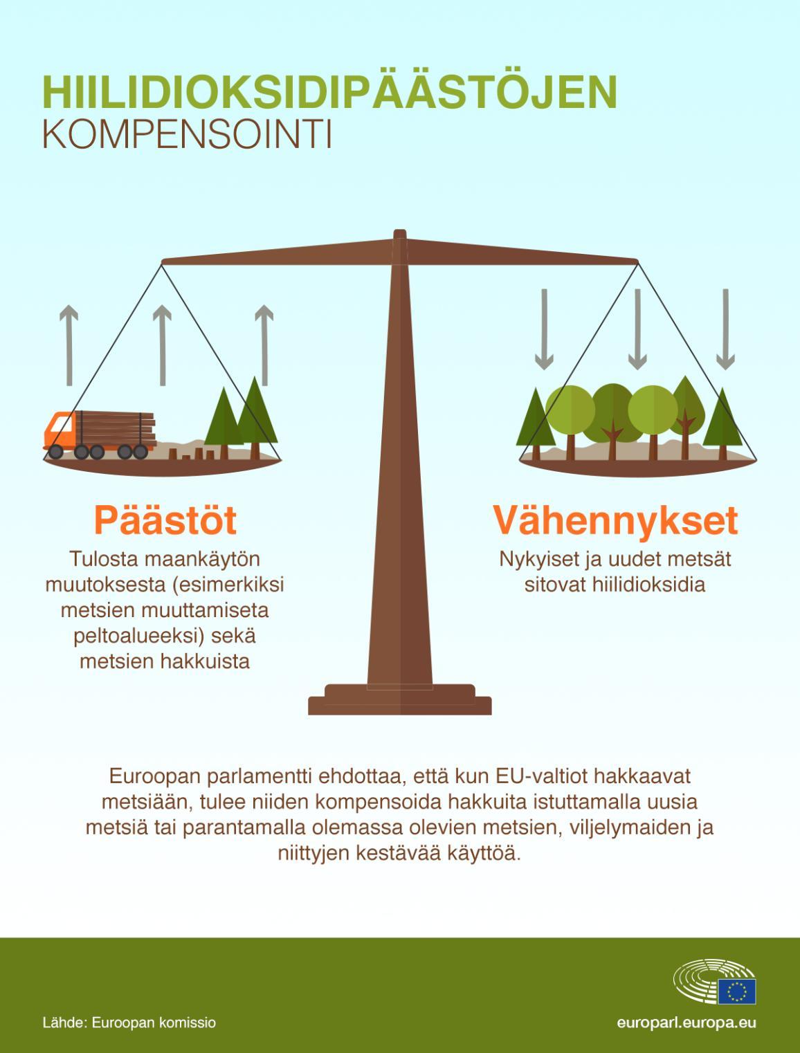 Infografiikka metsien vaikutuksesta hiilidioksidipäästöihin