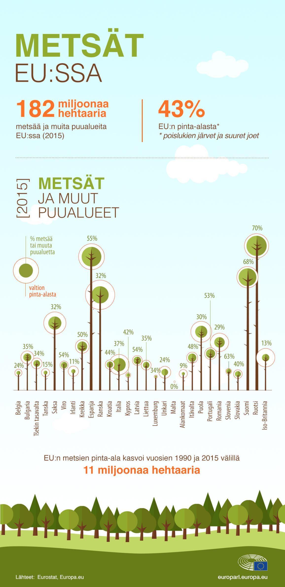Infografiikka metsistä EU:ssa