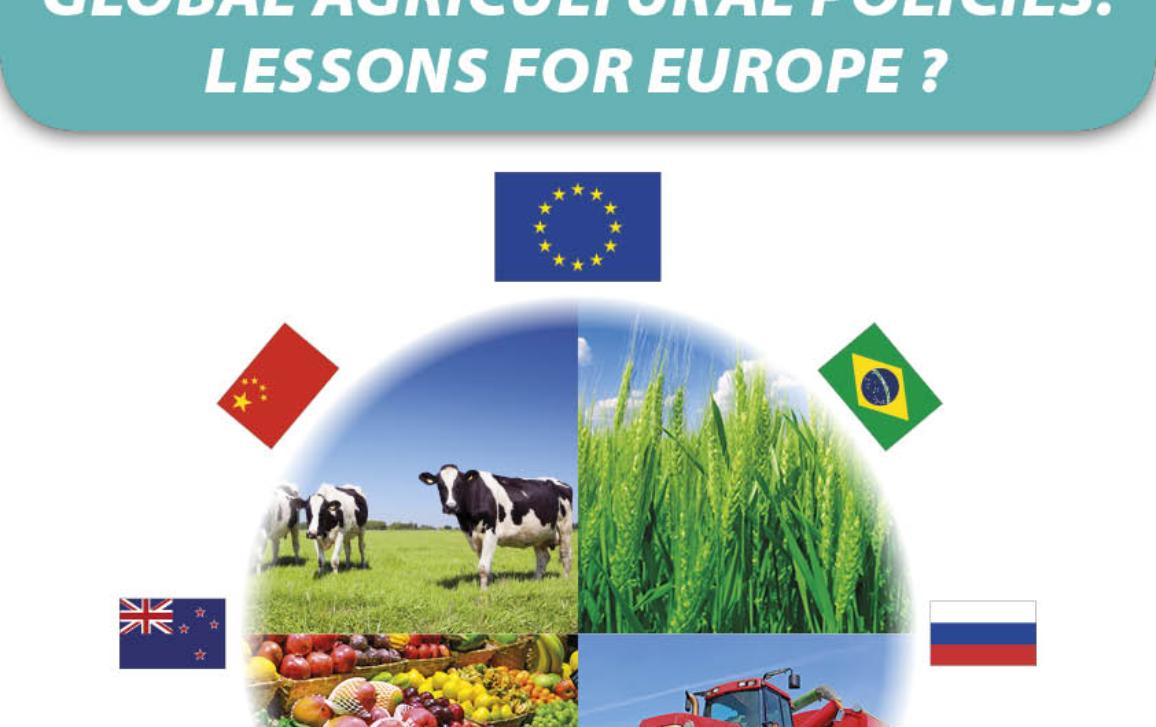 A comparative analysis of global agricultural policies: lessons for Europe?