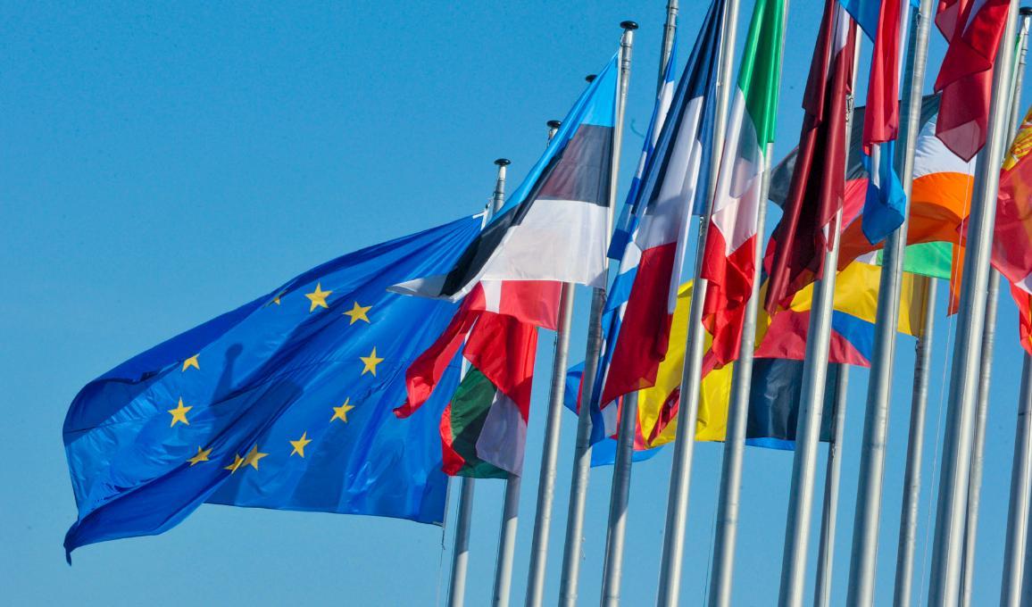 EU-Flagge und Flaggen der Mitgliedstaaten