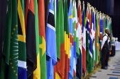 African flags at the African Union's 25th Summit