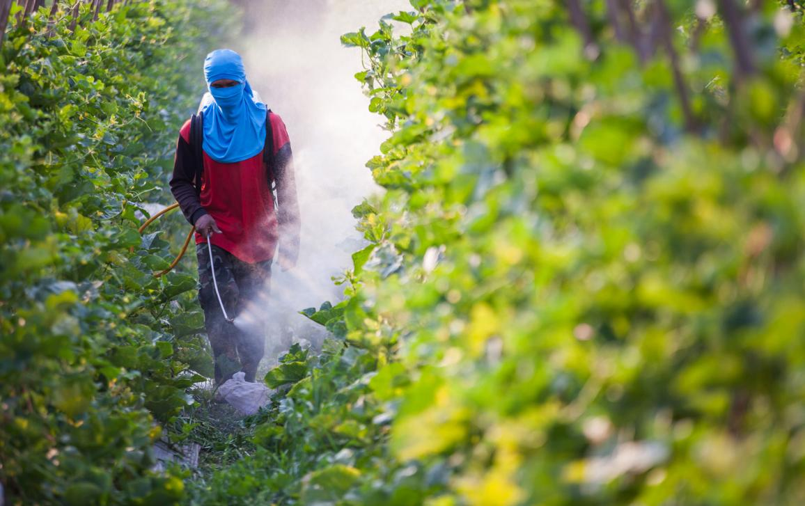 Spraying pesticide on a field ©AP Images/European Union-EP