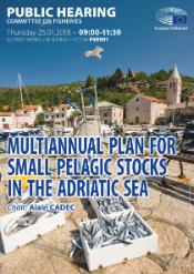 European Parliament Committee on Fisheries - Hearing on multiannual plan for pelagic stocks in the Adriatic sea