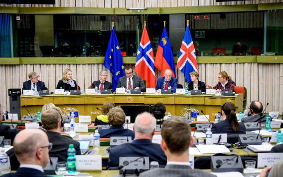 49th EEA JPC meeting, Strasbourg 2017