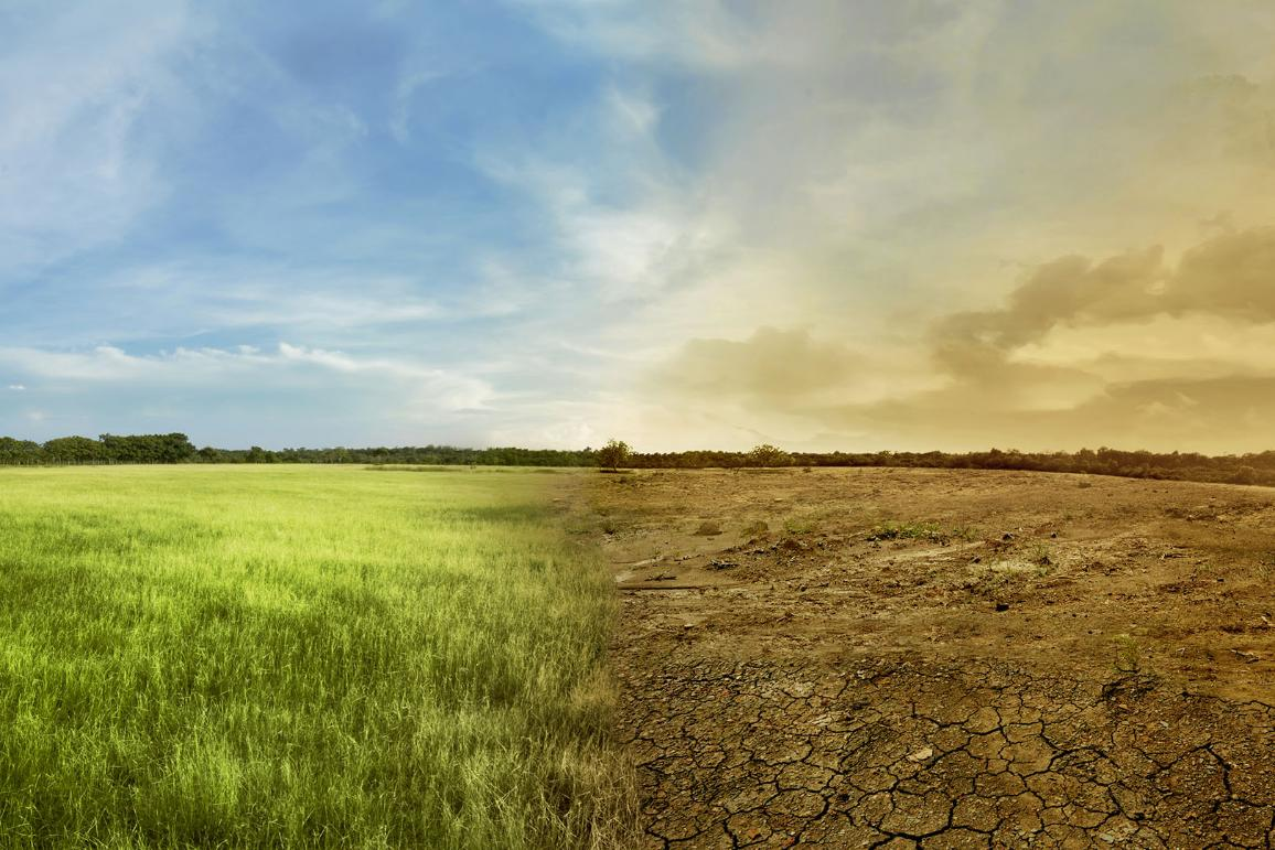 Пейзаж на поле и опустошена от суша земя