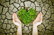 Hands holding a heart-shaped tree