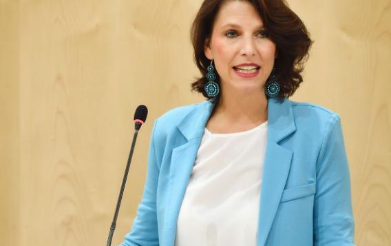 11th EuroLat Plenary Session