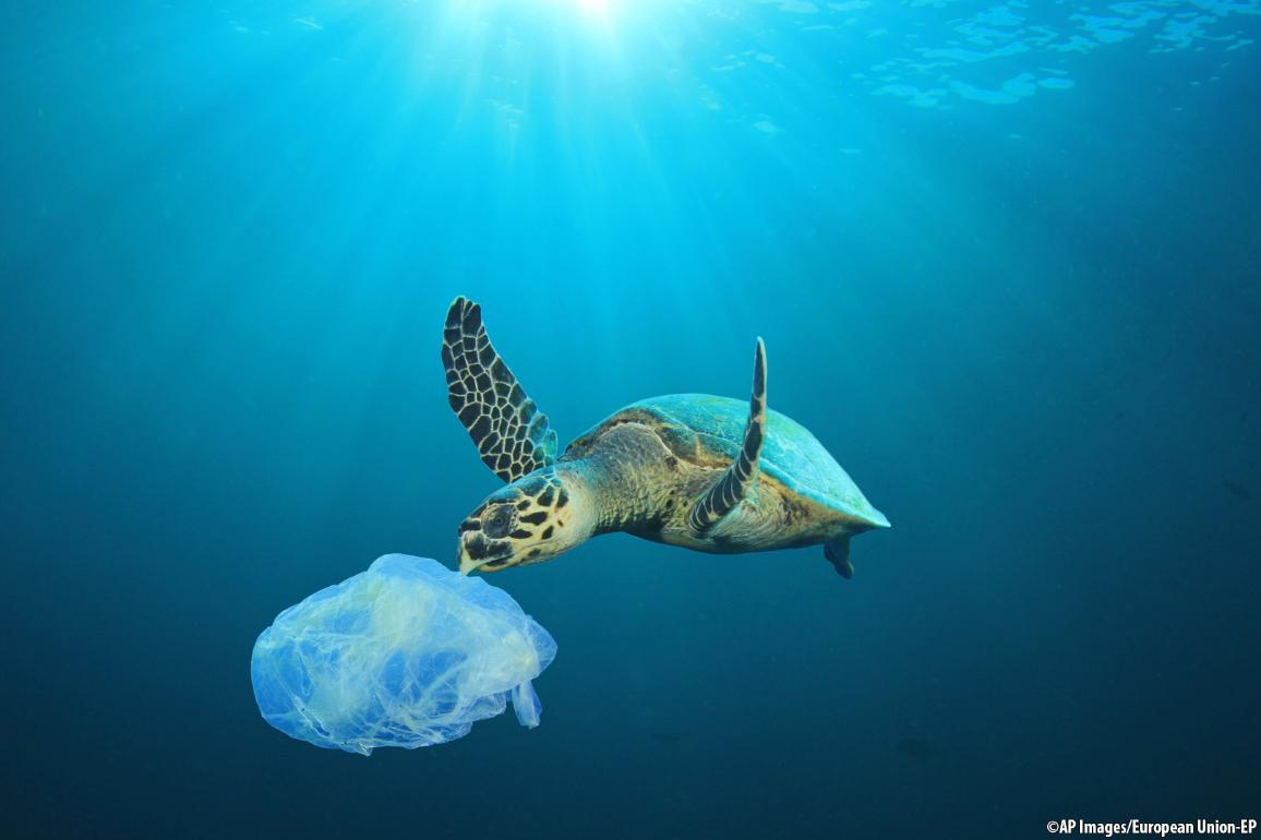 Illustration image for ocean plastic pollution ©AP images/European Union - EP
