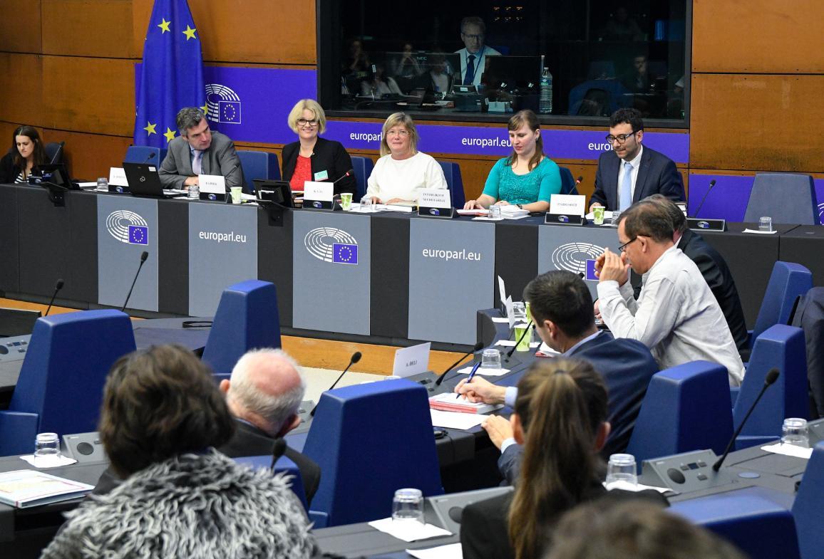 Réunion de l'intergroupe sur les minorités © Parlement européen