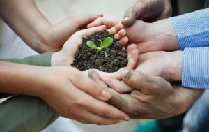 Child hands holding soil with a plant, supported by adults' hands