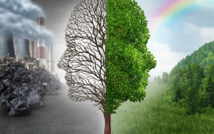 Environment change and global warming environmental concept as a scene cut in two with half showing a dead tree as a human head in pollution and the opposite with healthy green clean air and plants.