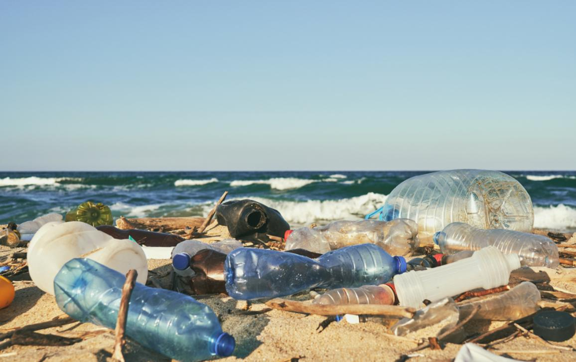 Reduction of the impact of certain plastic products on the environment