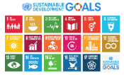 Sustainable Development Goals represented by 17 graphics from the UN official site