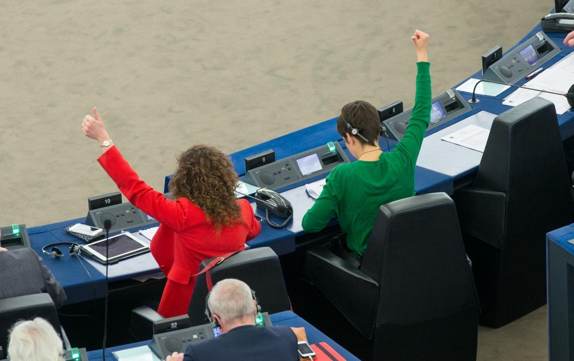 International Women's Day FEMM Committee