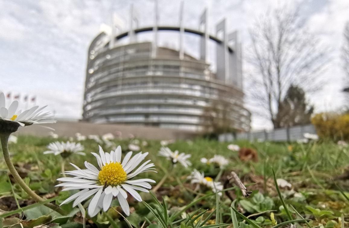 "Parlamentet i Strasbourg. ""CC-BY-4.0: © European Union 2019 – Kilde: EP""."