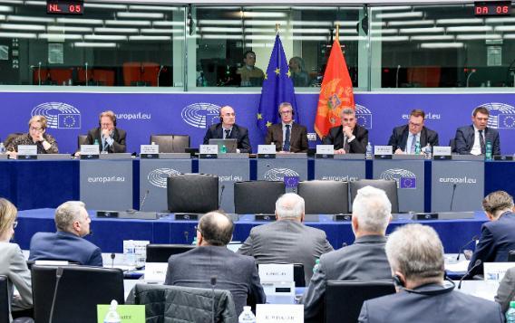17th EU-Montenegro SAPC meeting, Strasbourg