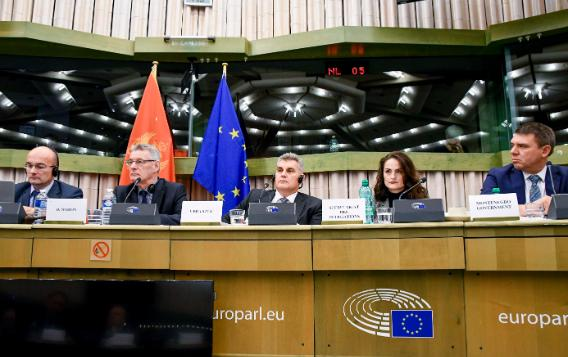 16th EU-Montenegro SAPC meeting, 14 November 2018, Strasbourg