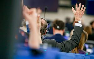 votes in plenary