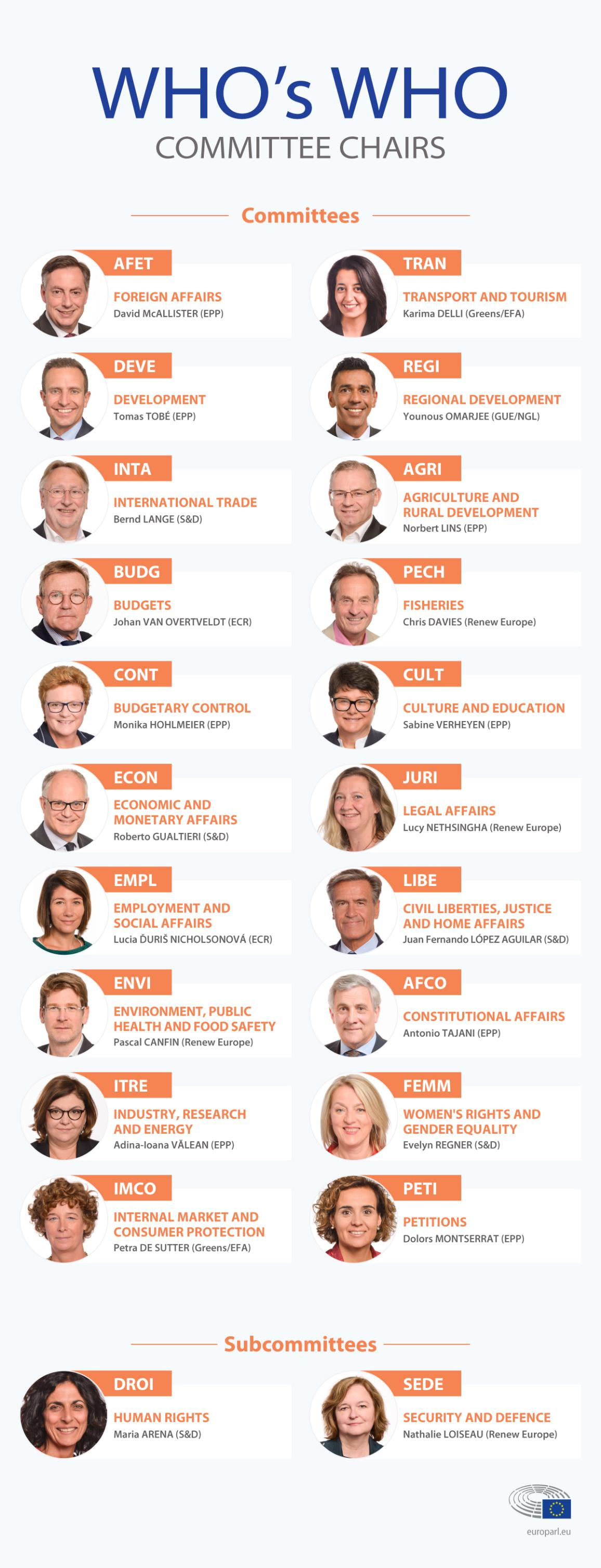 Infographic giving an overview of the different committee chairs