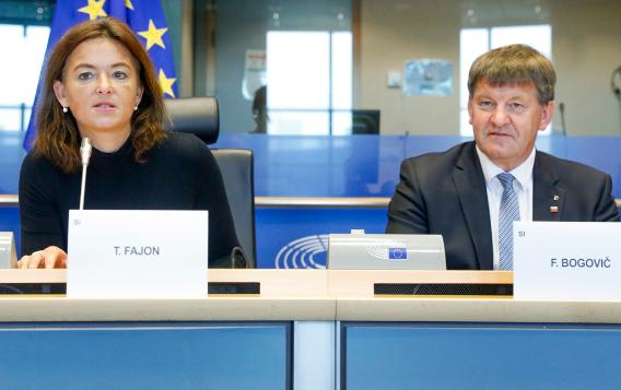 Chair and Vice-Chair of the EP Delegation