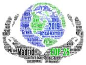 COP 25 in Madrid, Spain word cloud
