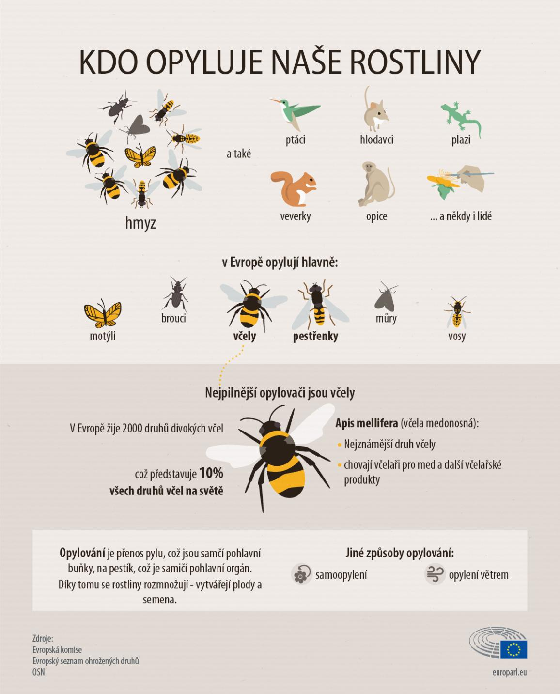Kdo opyluje rostilny - infografika