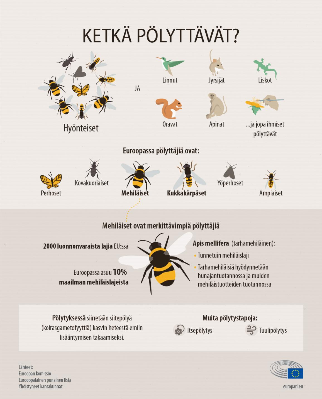 Infografiikka: pölyttäjät