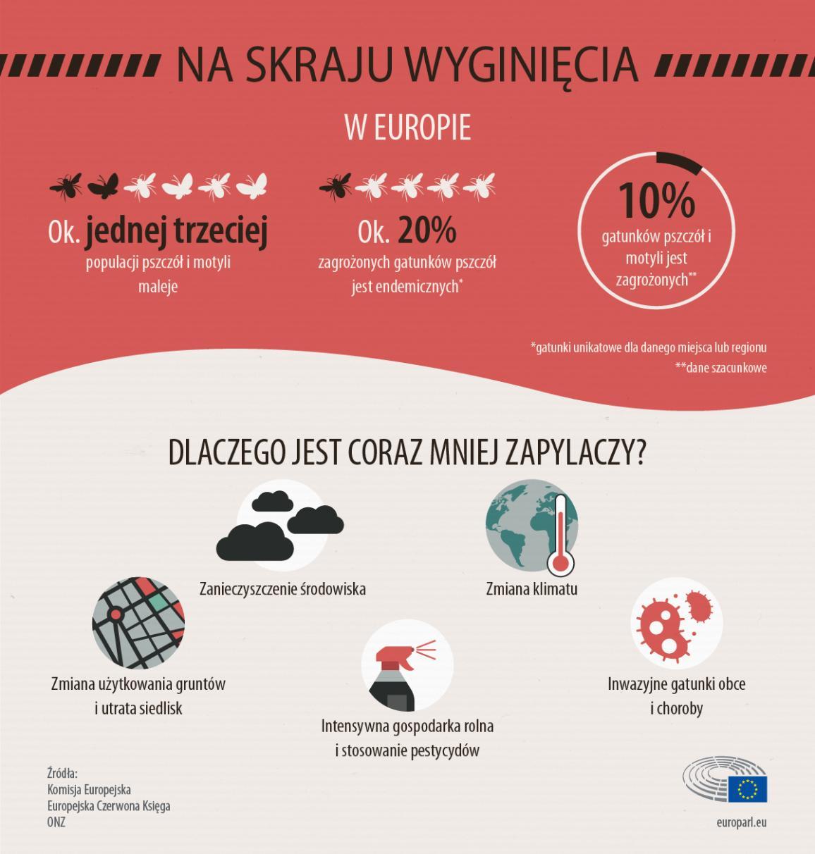 Infografika prezentująca statystyki i przyczyny dotyczące spadku liczebności zapylaczy.