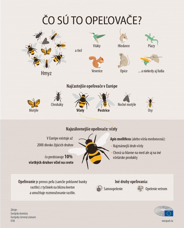 Infografika o opeľovačoch