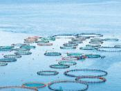 Aquaculture farms